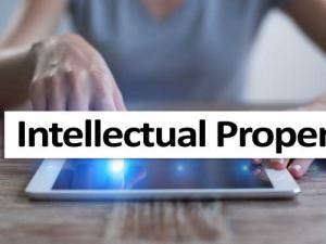 An Overview of Intellectual Property Rights
