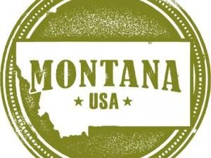 How to Start an LLC in Montana