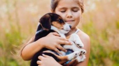 Protect Your Pup with a Dog Bill of Sale