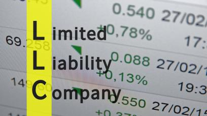 How Are Profits Split in an LLC?