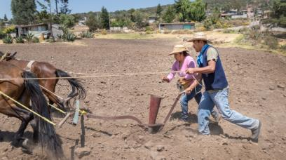 Illegal Aliens: Are They Trespassing in the U.S.?