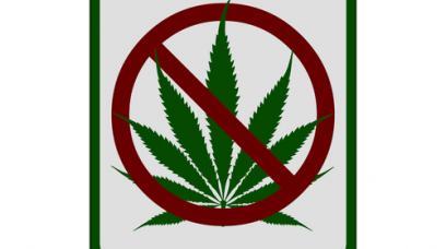 Marijuana DUI: How Marijuana Use Can Be Considered a DUI