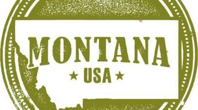How to Form a Montana Corporation