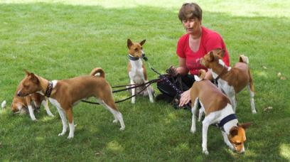 Starting A Dog Walking Business What You Should Know Legalzoom Com