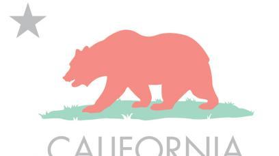 How to Start an LLC in California